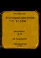 Fritz Hammerschmidt.png