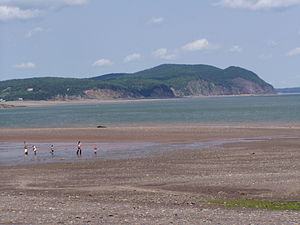 Fundy National Park - Image: Fundy National Park of Canada 6
