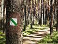 Funka, trail.jpg