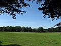 Furze Field - geograph.org.uk - 1456457.jpg