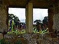 Garden window (28352412941).jpg