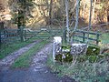 Gate and Stile at Hesp Alyn Farm - geograph.org.uk - 313416.jpg