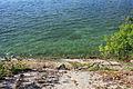Gfp-new-york-wellesley-island-state-park-water-of-the-seaway.jpg