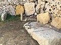 Ggantija, Gozo 79.jpg
