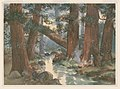 Giant redwood trees, Boulder Creek LCCN2003663880.jpg
