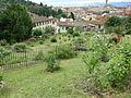 Giardino delle rose di firenze 03.JPG