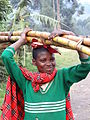 Girl Carrying Bamboo - Kisoro - Southwestern Uganda.jpg