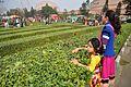 Girls at Maze - Science Park - Science City - Kolkata 2015-12-31 8455.JPG