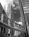 Glass and Steel (HONG KONG-ARCHITECTURE) VI (1232592589).jpg