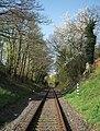 Gleis der Rangaubahn - panoramio.jpg