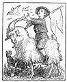 Goat Rider.jpg