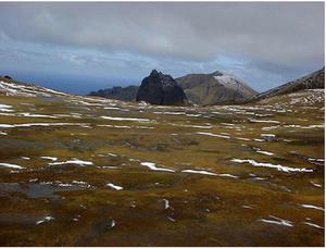 Anthony de la Roché - Gonçalo Álvares (Gough) Island