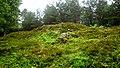 Gravhögar på Arnäsbackens gravfält, Arnäs sn, Örnsköldsvik. Burial mounds, Arnäsbacken, Örnsköldsvik, Sweden (2).jpg