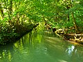 Green - panoramio (11).jpg