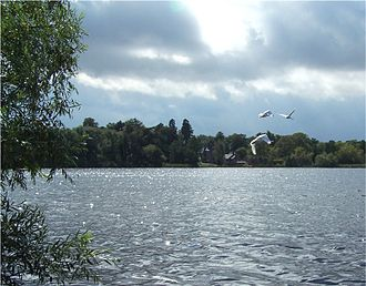 Groby - Groby Pool