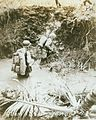 Guam USMC Photo No. 1-3 (21438870338).jpg