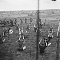 Gymnastiek, Bestanddeelnr 900-3438.jpg