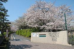 正門(東坂)