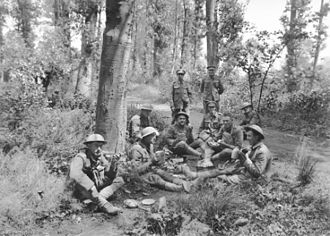 Battle of Hamel - British, American and Australian troops lunching in a wood near Corbie the day before the attack.