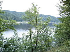 Harz Odertalsperre.jpg