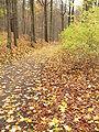 Herbst-ebw-6.jpg