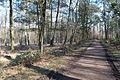 Hildener Heide 2016 080.jpg