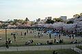 Himeji castle April 33.jpg