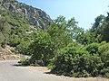 Holidays Greece - panoramio (288).jpg