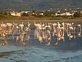 Holidays Greece - panoramio (402).jpg