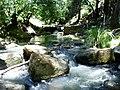 Horsearm Creek Nice creek walk - panoramio.jpg