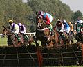 Horses racing (2881571031).jpg