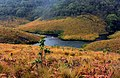 Horton Plains River.jpg
