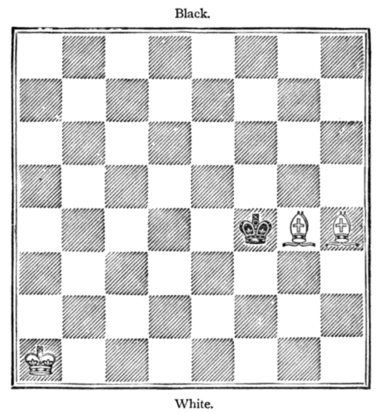 Fig. 19.[White to Move and Win.]