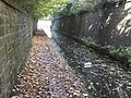 Huddersfield Narrow Canal and Lock 1w 3739.JPG