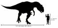 Human-allosaurus size comparison.png