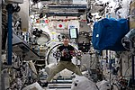 ISS-55 Drew Feustel works inside the Japanese Kibo lab.jpg