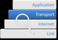 Internet Protocol Analysis - Transport Layer.png
