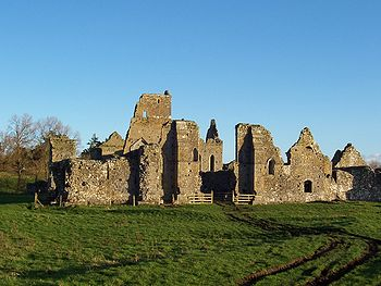 Ireland Athassel Priory.jpg