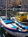 Istrski topo Adria.jpg