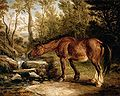 James Ward A Horse Drinking at a Stream.jpg