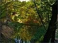 Jazierka II. - panoramio.jpg