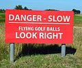 JerseyByWP Golf balls Brunswyk (2013).JPG