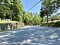 Jewell Hill Cemetery, Walnut, NC (50528731561).jpg