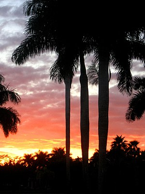 Weston, Florida -  Sundown in Windmill Ranches