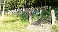 Judenfriedhof Hardheim.jpg