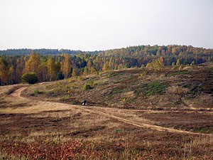 Põhja-Kõrvemaa Nature Reserve - A berry or mushroom picker on Jussi heath, an area formerly used for aerial bombardment training.