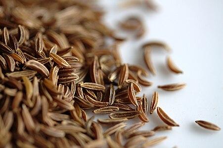 Kümmel / Caraway seeds