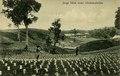 KITLV - 1405745 - Kleingrothe, C.J. - Medan - Young tobacco under shadow boards - 1905-1930.tif