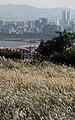 KOCIS Korea Autumn SkyPark 10 (10471590443).jpg
