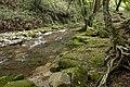 Kanomata River 02.jpg